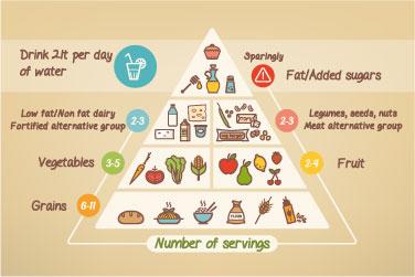 Διατροφολογική Υποστήριξη